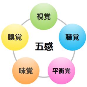 五感のイメージ図